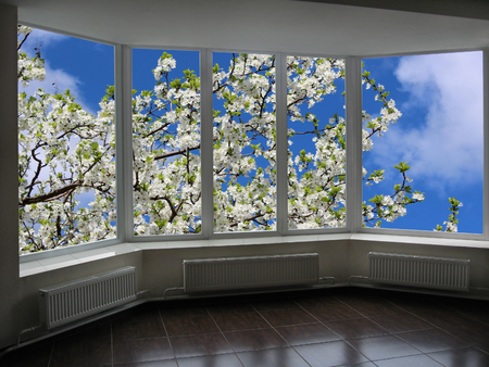 cherrytree: metal-plastic windows overlooking the garden with blossoming cherry-tree