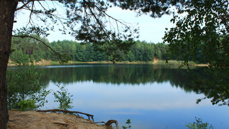 beautiful summer landscape with picturesque lake in the forest