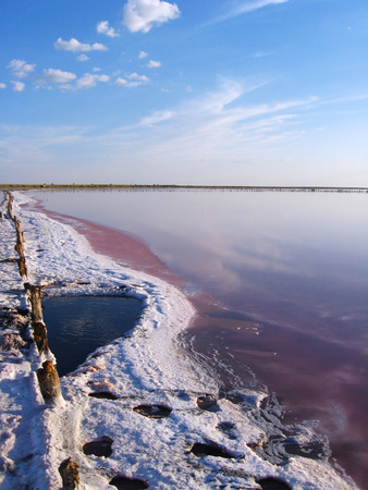 salty: landscape with salty sea where the salt is extracted in Sivash