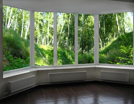 birchwood: window of veranda overlooking the beautiful birchwood with ravines Stock Photo