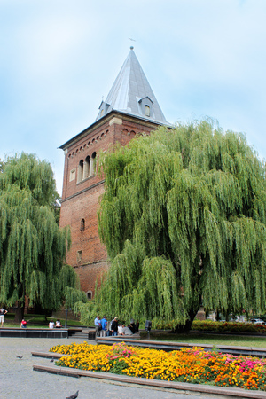 willows: tall castle surrounded by the green willows in Drohobych Ukraine