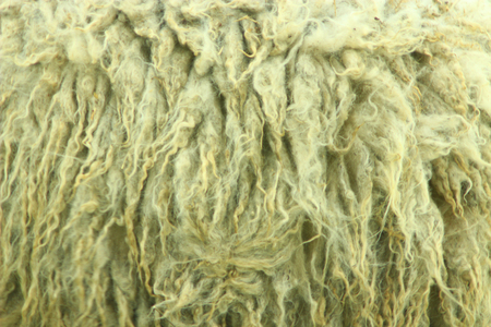 thick: natural texture completely from light thick fleece