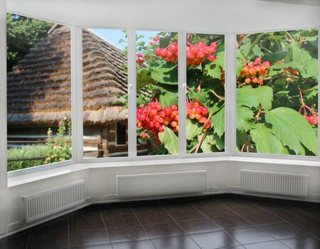guelderrose: windows overlooking the branches of red ripe guelder-rose and Ukrainian old house