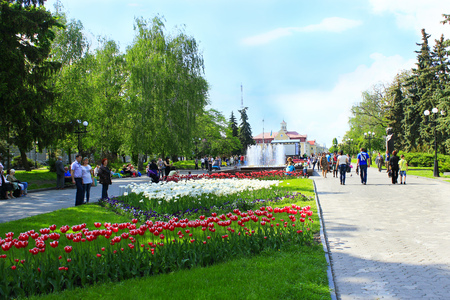 tulips in green grass: People have a rest in city park with tulips in the spring