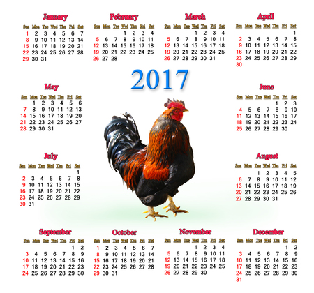 next year: office calendar for 2017 with image of cock. Rooster is the symbol of next year