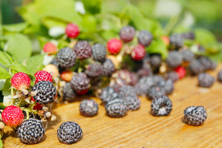 black raspberry with berries and leaves on the light wooden background Stock Photo