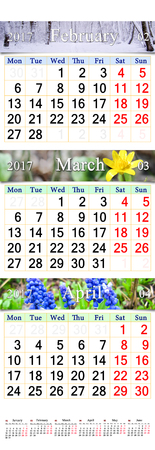 next year: calendar for February March and April 2017 with colored pictures of nature. Wall calendar for first quarter of 2017 Stock Photo