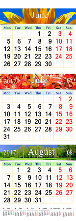 next year: office calendar for three months June July and August 2017 with pictures of sunflower lilies and landscape