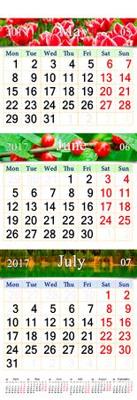 春の 3ヶ月間の壁掛けカレンダー自然の写真で 6 月と 7 月 2017 年を可能性があります。大量印刷、オフィス ライフのウォール カレンダーとして使用
