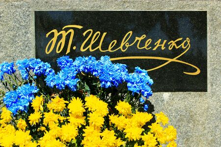 national poet: yellow and blue chrysanthemum near the inscription on the monument of Ukrainian famous poet Shevchenko T. Beautiful flowers of chrysanthemum in colors of Ukrainian national flag