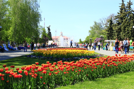 passerby: people have a rest in the city park with beds of tulips in the spring