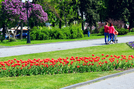 people have a rest in the city park with beds of tulips in the spring