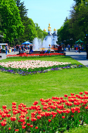 passerby: city park in Chernihiv with beautiful view to church