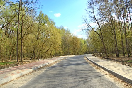 Asphalted road in spring park. Empty road in wood. Road in city park between trees in spring Фото со стока