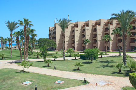 Grassy lawn among palm trees at resort in Egypt. Hotel with well-groomed territory. Footpath between green grass in territory of five star hotel. Beautiful lawn with grass between palm trees