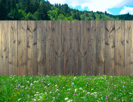 Wooden fence standing on summer lawn with flowers. Fence made from dark boards on grass. Summer meadow along rural fence Banque d'images - 114582319