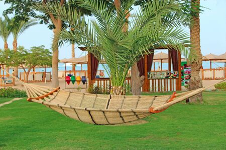 Empty hammock at tropical resort above green grass. Hammock is resdy for summer holidays. Enjoing relaxing. Place for relax. Enjoying summer vacations