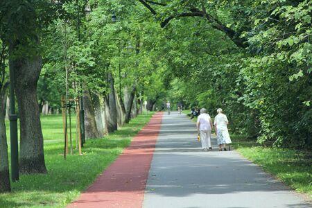 Two old women are walking in park with treadmill. Two elderly women walk in summer park. Elderly people walk in park
