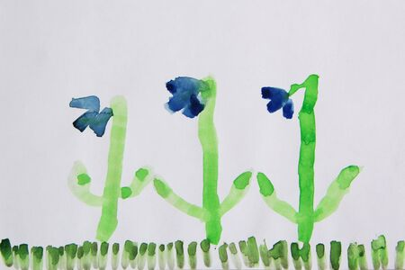 Children drawing of snowdrops growing on green lawn. Childish art. Artwork of children. Spring flowers blooming in beginning of spring