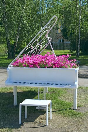 Piano with notes and petunia blossoming within. Flowers of red petunias growing within grand piano outdoor. Keyboard musical instrument. Original landscape design in city street. Music concept