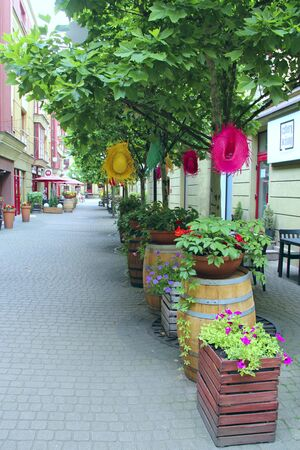Nature in modern city. Flowers in city street decoration. Beautiful flower beds in city. Urban nature in Warsaw. Floral decoration on city street