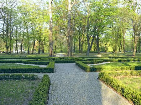 Empty beautiful park with many green trees and boxwood. Summer park with place for rest. City park in Lodz with tall trees and sheared bushes of boxwood 스톡 콘텐츠