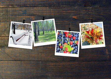 Photos of four seasons attached to dark wooden wall. Seasons on dark background. Photo of four seasons. Seasons of nature. Nature photos