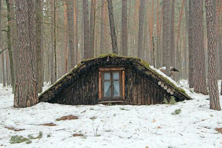 Partisan dugout in winter forest. Earth-house built by Soviet partisans in Ukrainian forest during Secont World War. War museum in forest. Dwelling of Soviet partisans in winter wood