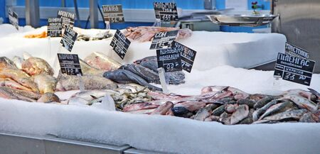 Fresh salmon, carp, pelengas,sazan, cat-fish in pile of ice in supermarket. Fish ingredient of food. Natural ingredients. Frozen fish in sale. Fresh frozen fish in ice is sold in store.