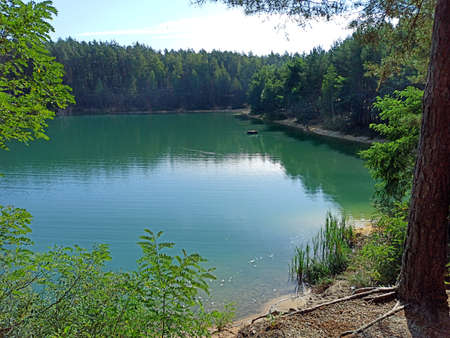 Beautiful forest lake with emerald water in the pine forest. Wonderful natural view. Water panorama. Wild nature