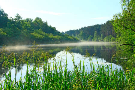 Morning sunrise over the river. Wonderful summer landscape. The river is covered with fog at dawn. Forest is reflected in the river in summer