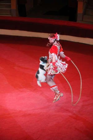 trained poodle and trainer jump rope in circus arena. Performance of animals in the circus. Circus number with dog. Dog doing a show with skipping-rope. Amusing dog