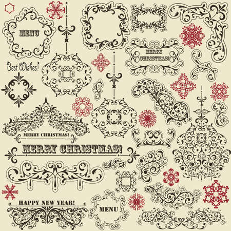 vector vintage holiday floral  design elements  and snowflakes Vector
