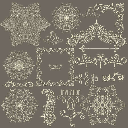 ornamental scroll:  lacy  vintage floral  design elements,  fully editable