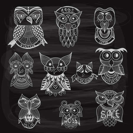 10 chalk drawn owls on blackboard Vector