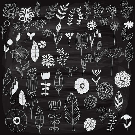 whote: Vector Chalk Drawn Spring Floral Design Elements