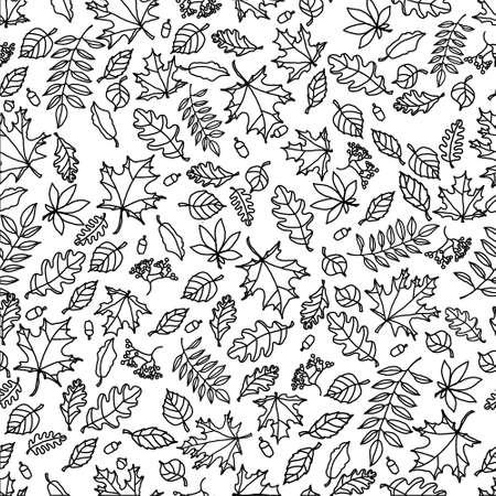 doodle white autumn leaf pattern