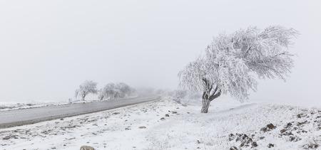 Road to Pirkuli Azerbaijan photo