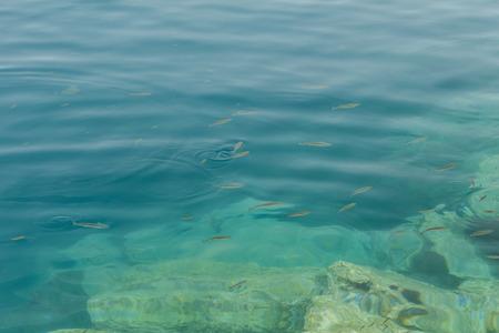 aegean: Aegean Coast Stock Photo