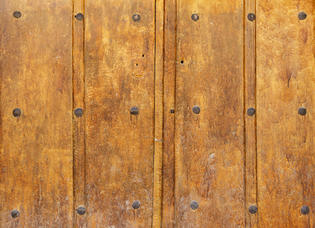 rivets: old Wooden gate with large rivets