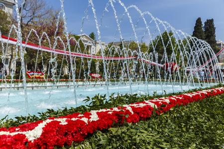 festiva: Installation of carnations on a flower festival in Baku