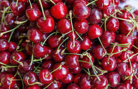 collected: Freshly collected cherries Stock Photo