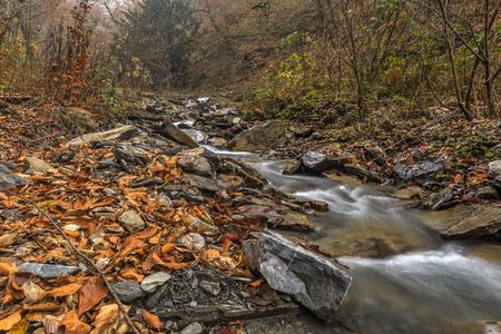 range of motion: Mountain River.Gabala.Vandam.Azerbaijan