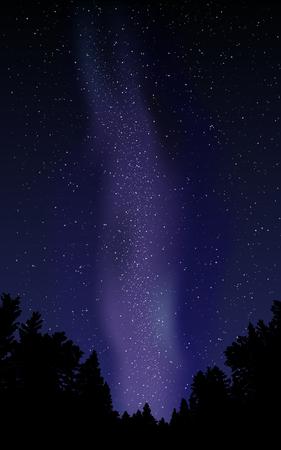 stars sky: Night sky with stars and milky way.Vector illustration