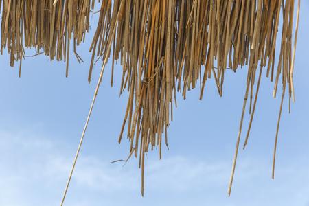 Reed Beach-paraplu