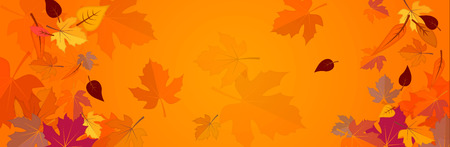 Banner on the autumn theme 矢量图像