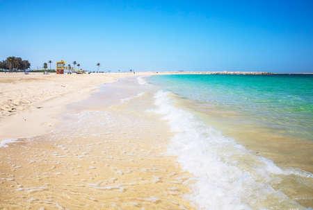 Palm trees on Al Mamzar beach in Dubai