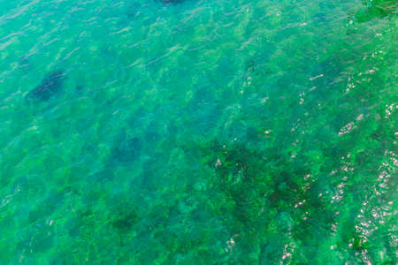Texture of turquoise surface of water in the sea