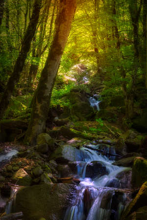 Mountain waterfall in spring forest