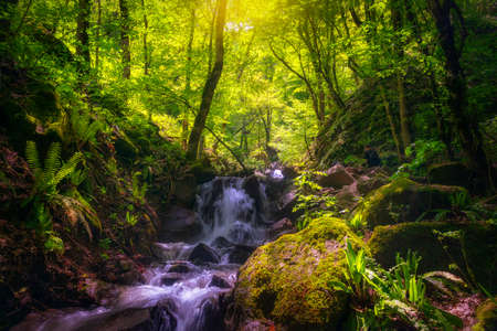 Shamakhi, Azerbaijan - May 10, 2021: Mountain waterfall in spring forest